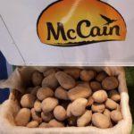 McCain Staycrisp