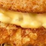 Nieuwe kipburger met broodjes van rijst voor McDonald's Japan