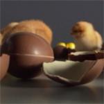 Het designen van food en snacks