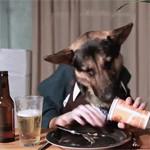 """Hond met """"handen"""" eet yoghurt"""