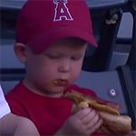 Hotdogs eten bij honkbal