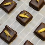Chocolade met gouden sprinkhaan op de top